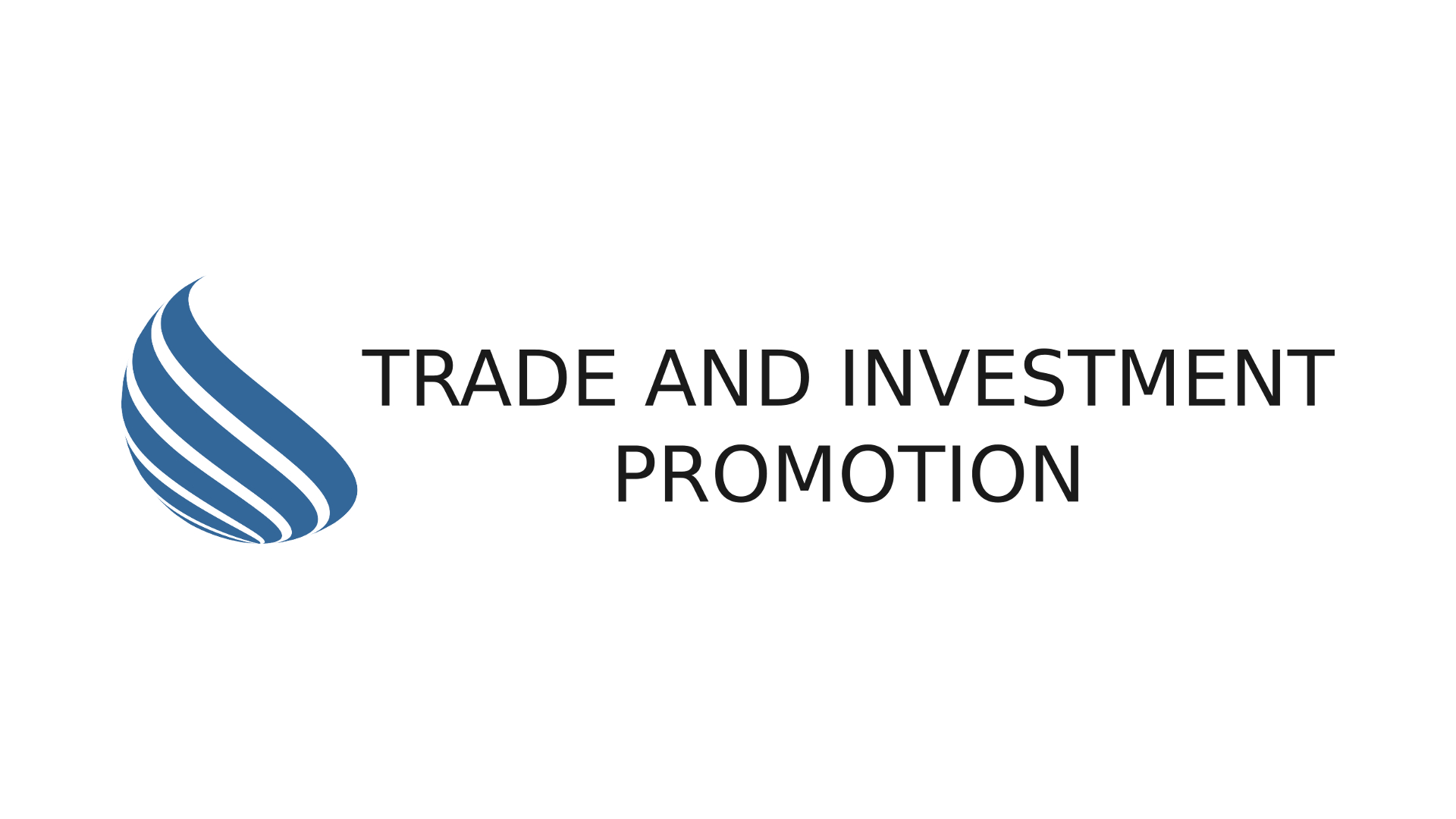 Trade and investment promotion section tobias strubel investments
