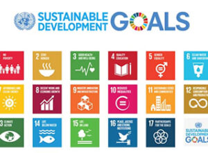 SDG trade